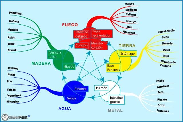 Los 5 elementos y la alimentación