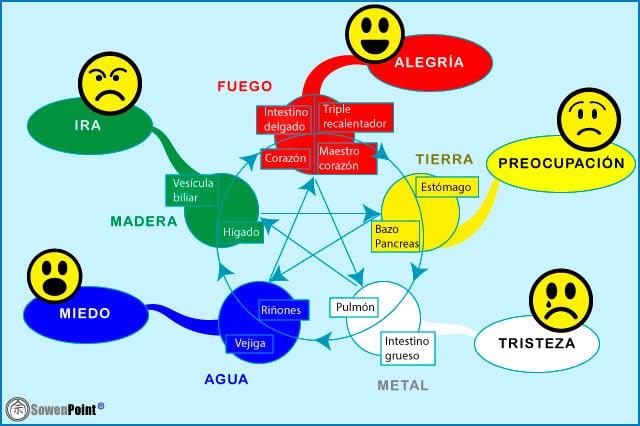 Los 5 elementos y las emociones