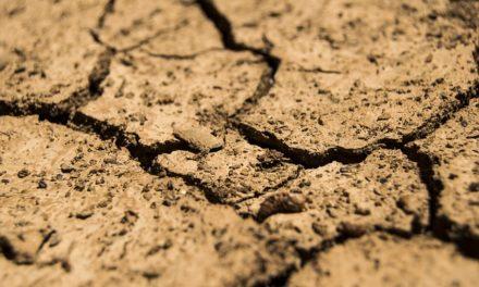 La sequía corporal, el tipo más grave de estrés.
